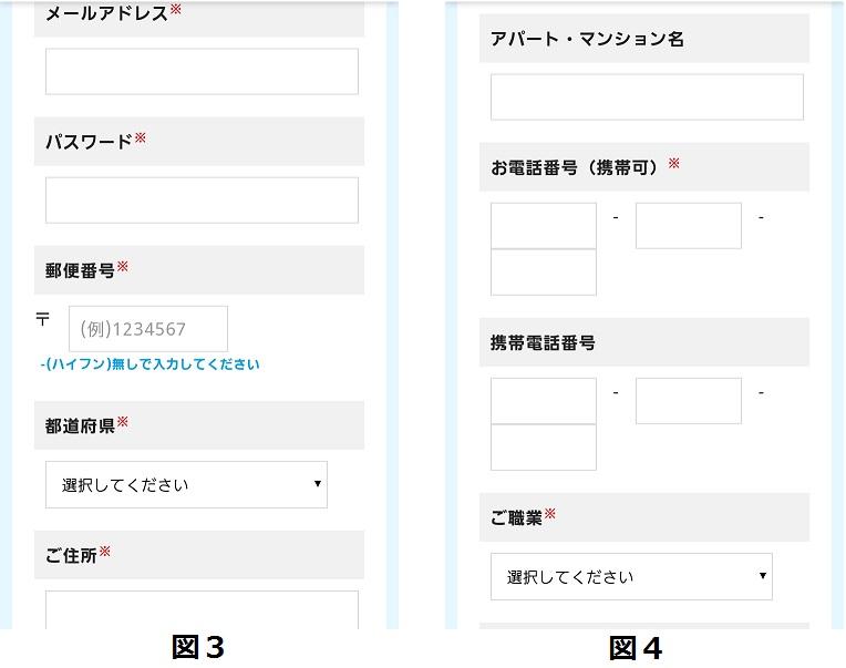 図3.情報入力画面2と図4.情報入力画面3