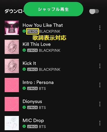 Spotifyの歌詞表示対応のプレイリスト
